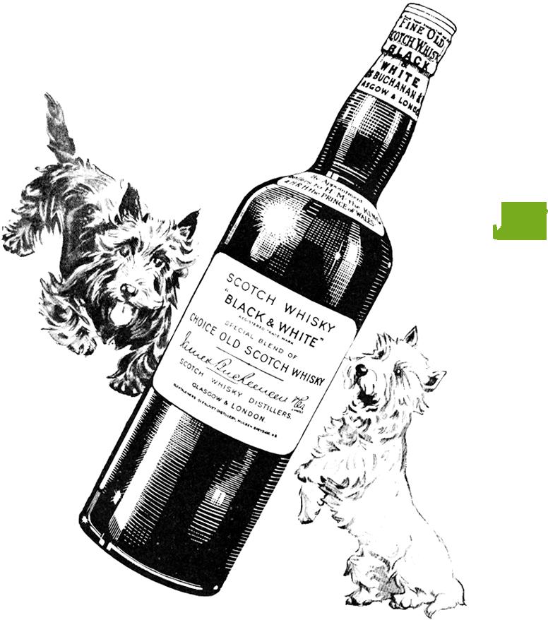 Un Whisky Con Tradición Black White